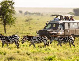 Загадки африканской Кении